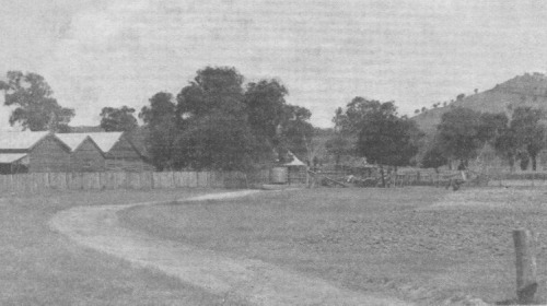 Panoramic View of Kelly's Homestead, showing Kelly's Lookout in the Background.
